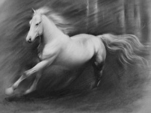 Horse Drawing 300x225 Kahve falında at görmek